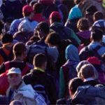 banner_migratierecht_tcm247-703936
